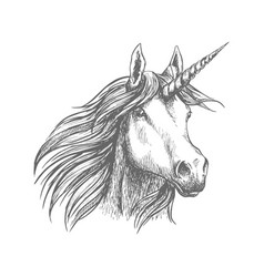 Unicorn horse animal sketch vector