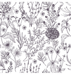 Antique floral seamless pattern with wild flowers vector