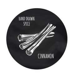 cinnamon sketch in blackboard round vector image