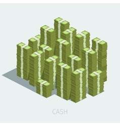 Concept of big money vector image