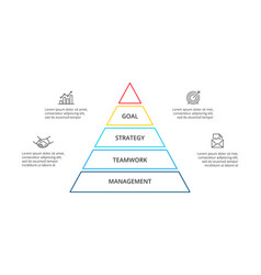 linear pyramid infographic with 4 options vector image