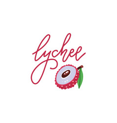 logo sweet lychee with hand drawn linear vector image