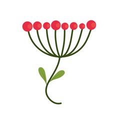 floral nature decoration image vector image