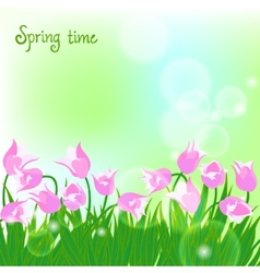 Spring card background with pink tulips vector image vector image