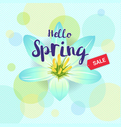 floral spring with light blue flower and colorful vector image vector image