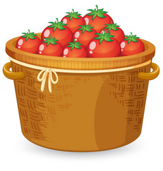 A basket of red tomato vector