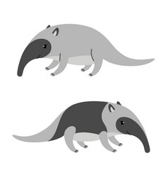 cute cartoon anteater isolated on white background vector image