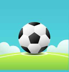 football on grass and line with sky background vector image