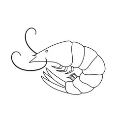 Isolated object prawn and raw symbol vector