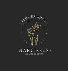Narcissus flower logo for spa and beauty salon vector