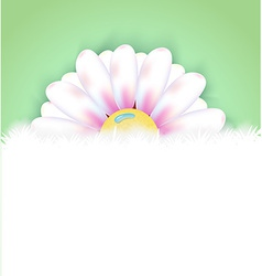 Realistic flower vector