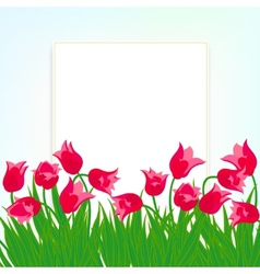 Spring card background with red tulips vector