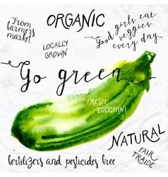 Watercolor zucchini vector image