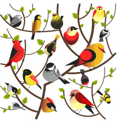 birds sitting on tree branch flat different vector image vector image