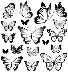butterfly silhouettes vector image