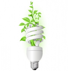 eco lamp vector image