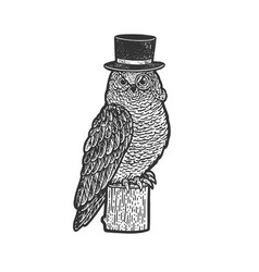 owl in top cylinder hat sketch vector image