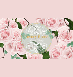 roses delicate card background vector image
