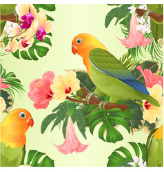 Seamless texture parrots lovebird agapornis vector