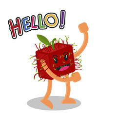 Smiling rambutan fruit cartoon mascot character vector