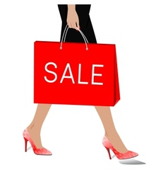 Woman with package sale vector image vector image