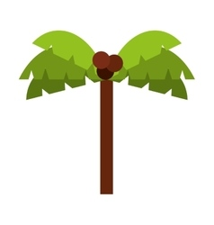tree palm isolated icon design vector image vector image