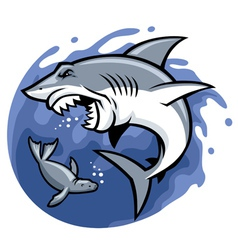 shark and seal vector image vector image