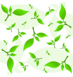 abstract plant background vector image