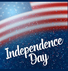 day of independence of usa poster vector image