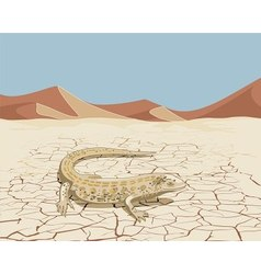 Landscape with lizard vector