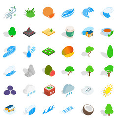 Leaf tree icons set isometric style vector