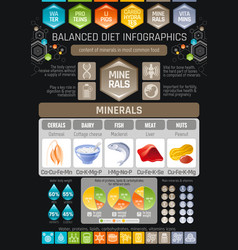 minerals diet infographic diagram poster water vector image