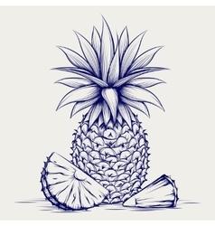 Ball pen sketch pineapple vector
