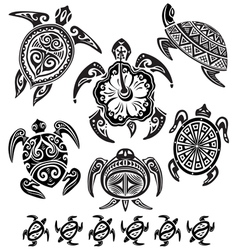 decorative turtles vector image