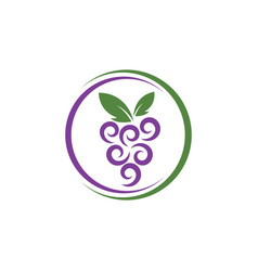 Grape with leaf logo vector