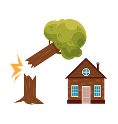 Tree falling on house property insurance icon vector