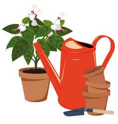 flower room and watering vector image