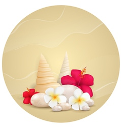 round sand background with flowers vector image vector image