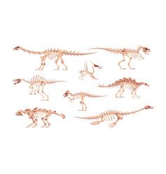 Dino bones cartoon dinosaur skeletons for kids vector