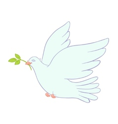 dove of peace on white background vector image