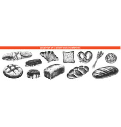 engraved style bakery and bread collection for vector image