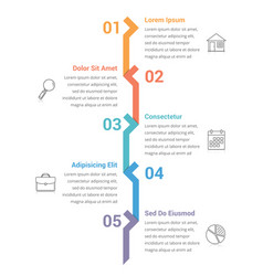 five steps infographics vector image