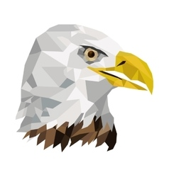 geometric texture eagle icon vector image