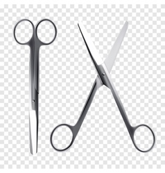 Scissors realistic vector image