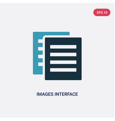 Two color images interface icon from user vector