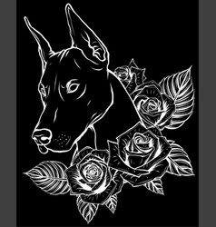 white silhouette dobermann dog face with roses vector image