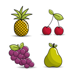 pineapple cherry grapes and pear icon vector image vector image