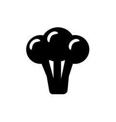 broccoli icon in trendy flat style isolated on vector image vector image