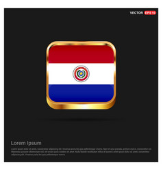 paraguay flags design vector image