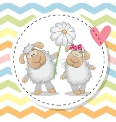 Greeting card with two Sheep vector image